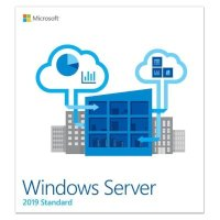 Microsoft Windows Server Standard 2019 P73-07935